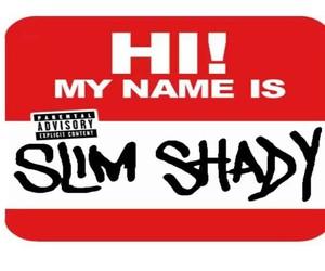 eminem, slim shady, and marshall mathers image