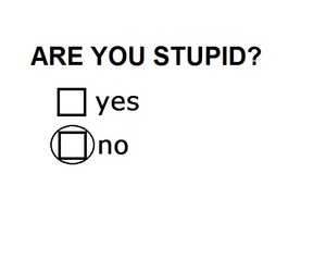 no, stupid, and yes image