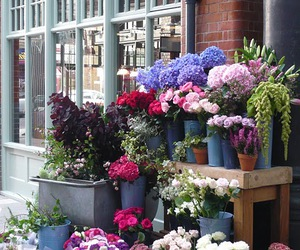 farmers market and flowers image