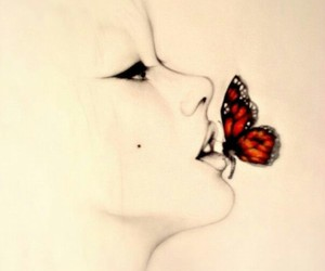 beauty and red buttefly image