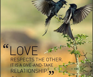 osho and love image