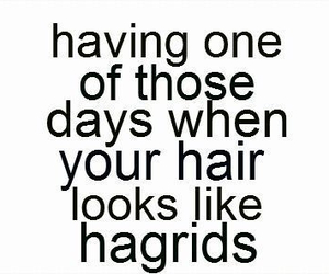 hair, harry potter, and hagrid image