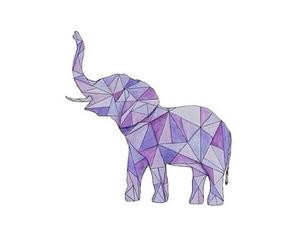 elephant, purple, and overlay image