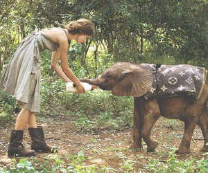 elephant, girl, and cute image
