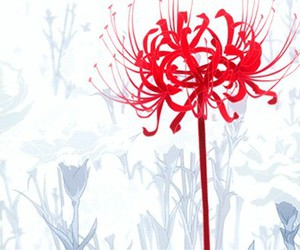gif, flowers, and red image