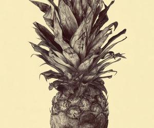 head and pineapple image