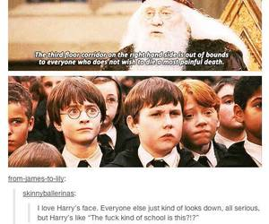 harry potter, funny, and hogwarts image