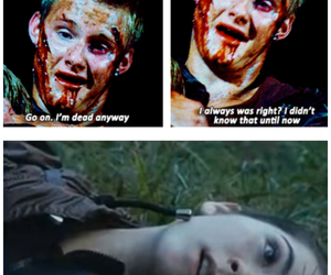 Clove, dead, and death image