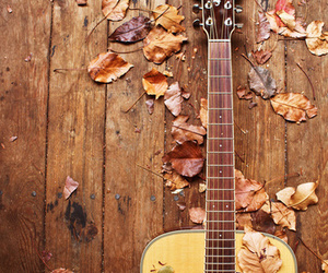 guitar, autumn, and music image