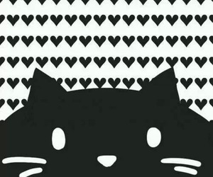 cat, wallpaper, and heart image