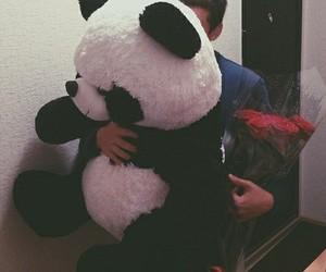 love, panda, and boy image