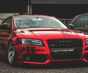 audi and red audi image