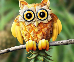 owl, fruit, and pineapple image