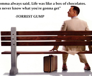 chocolate, forrest gump, and movies image