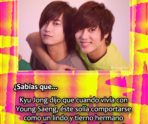 kpop, youngsaeng, and ss501 image