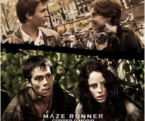 augustus, thomas, and maze runner image
