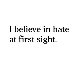 first sight, hate, and quotes image