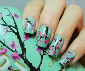 arizona, flowers, and pink image