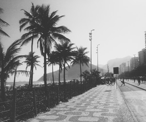 beach, black and white, and nature image