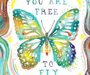 butterfly, fly, and free image