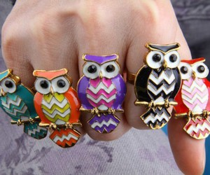charming, owl, and jewels image