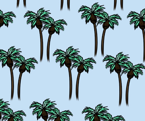 blue, brown, and palm image