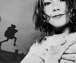 bjork, black & white, and black and white image