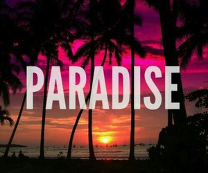 night, paradise, and pink image
