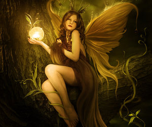 fairy, fantasy, and wings image