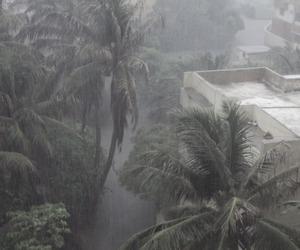 grunge, pale, and rain image