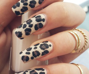 girly, leopard, and nail art image