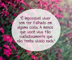 Image by  Raíssa De Toledo