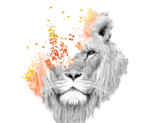 lion and art image