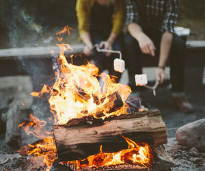 fire, friends, and marshmallow image