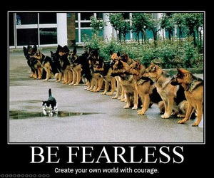 fearless and own world image