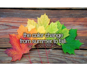 change, fall, and summer image