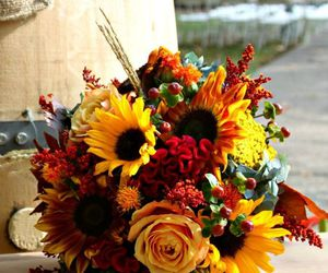 autumn, decoration, and flowers image