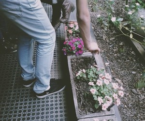 flower, flowers, and grunge image