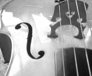 cello, instrument, and music image