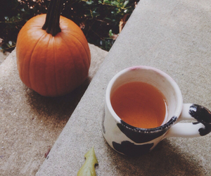 autumn, cider, and fall image