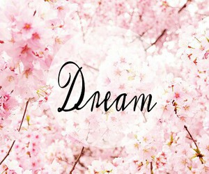 colour, Dream, and flowers image