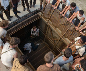 the maze runner, newt, and thomas image