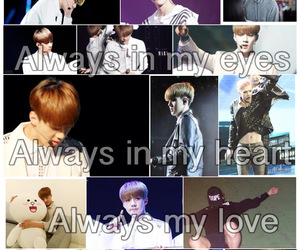 always, sehun, and exo image