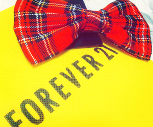 bow, checkered, and fashion image
