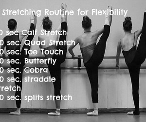 flexibility and stretches image