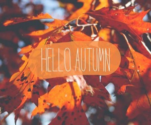autumn, goodbye, and summer image