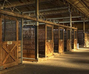 horse stalls image