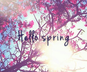 hello, welcome, and welcome spring image