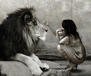 lion and girl image