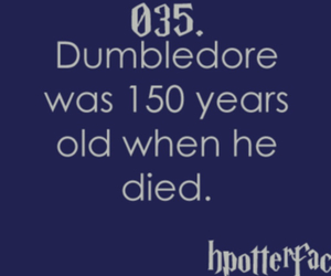 harry potter, hpotterfacts, and dumbledore image
